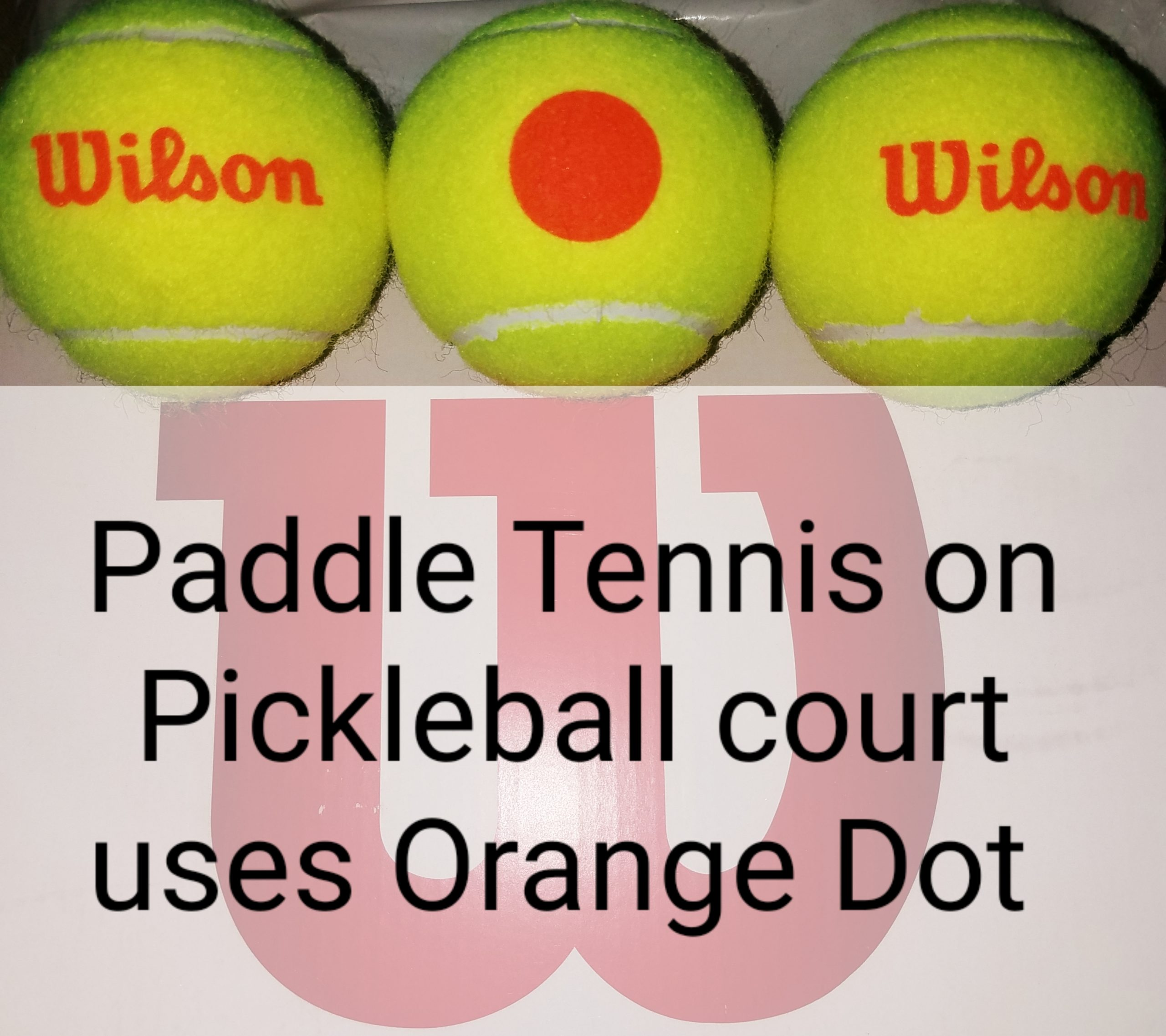 Paddle Tennis on a Pickleball court is still Paddle Tennis, and Spec Tennis.